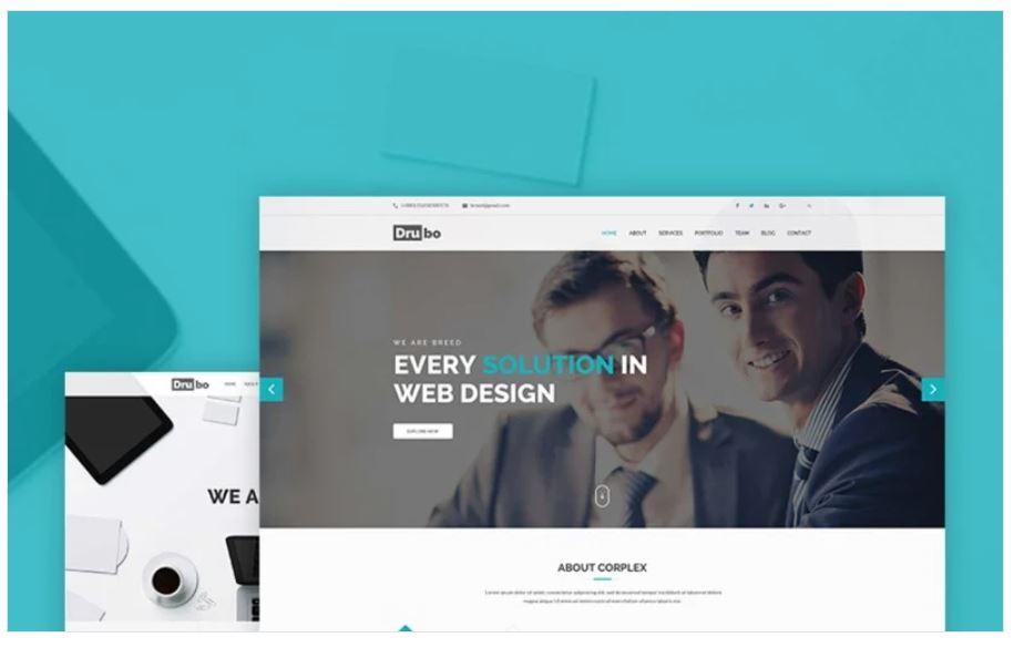the Drubo business wordpress theme
