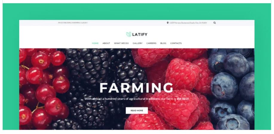the Latify business WordPress theme
